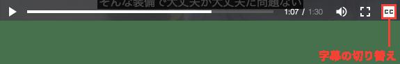 動画コントロールメニュー